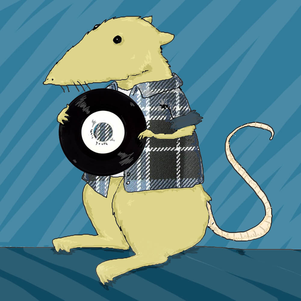 Mouse with flennel shirt and vinil | Record store day | illustraton by Tostoini