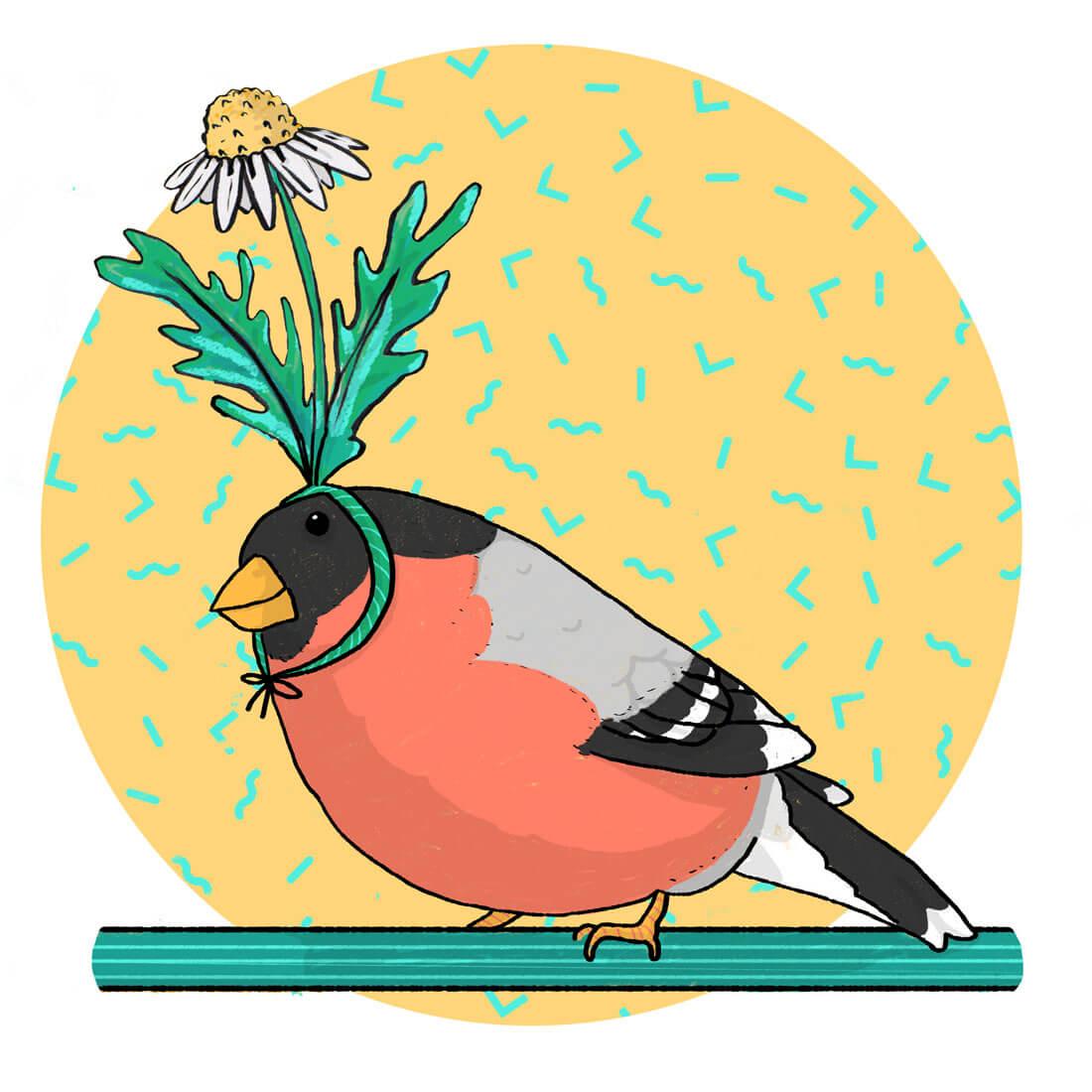 bird-of-a-feather-illustration-tostoini