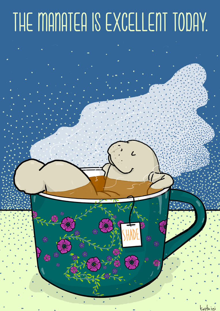 manatea-manatee-illustration-lamentino-tostoini