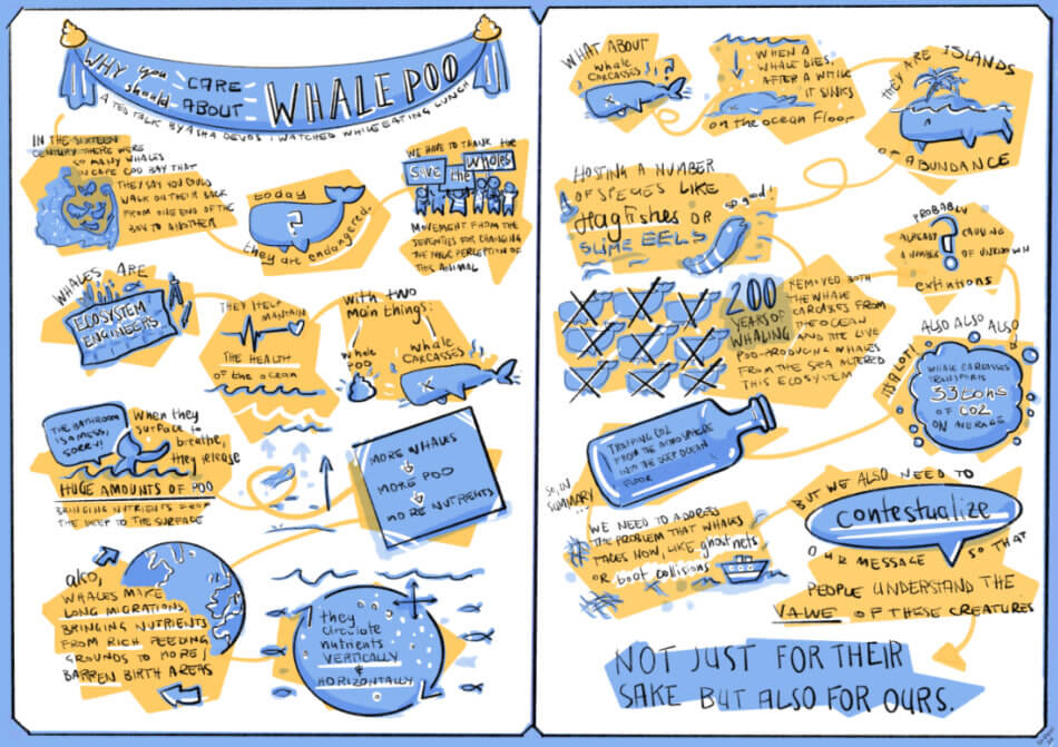 whale poo graphic recording tostoini
