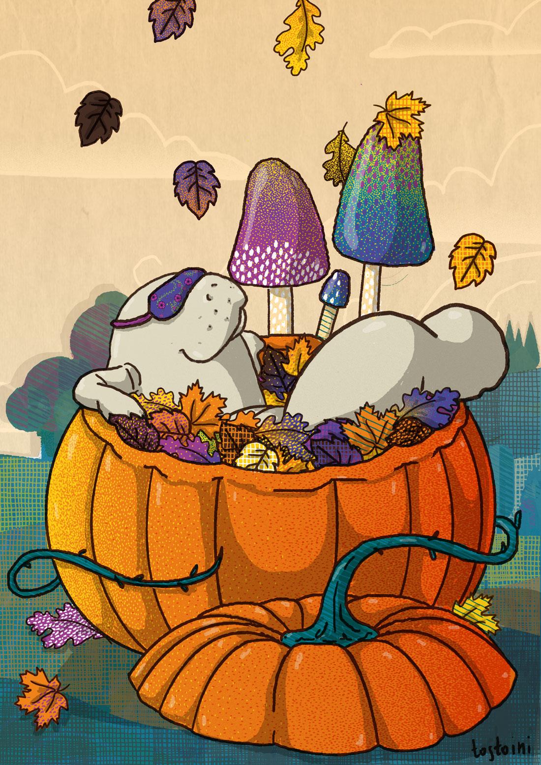 autumn-manatee-tostoini