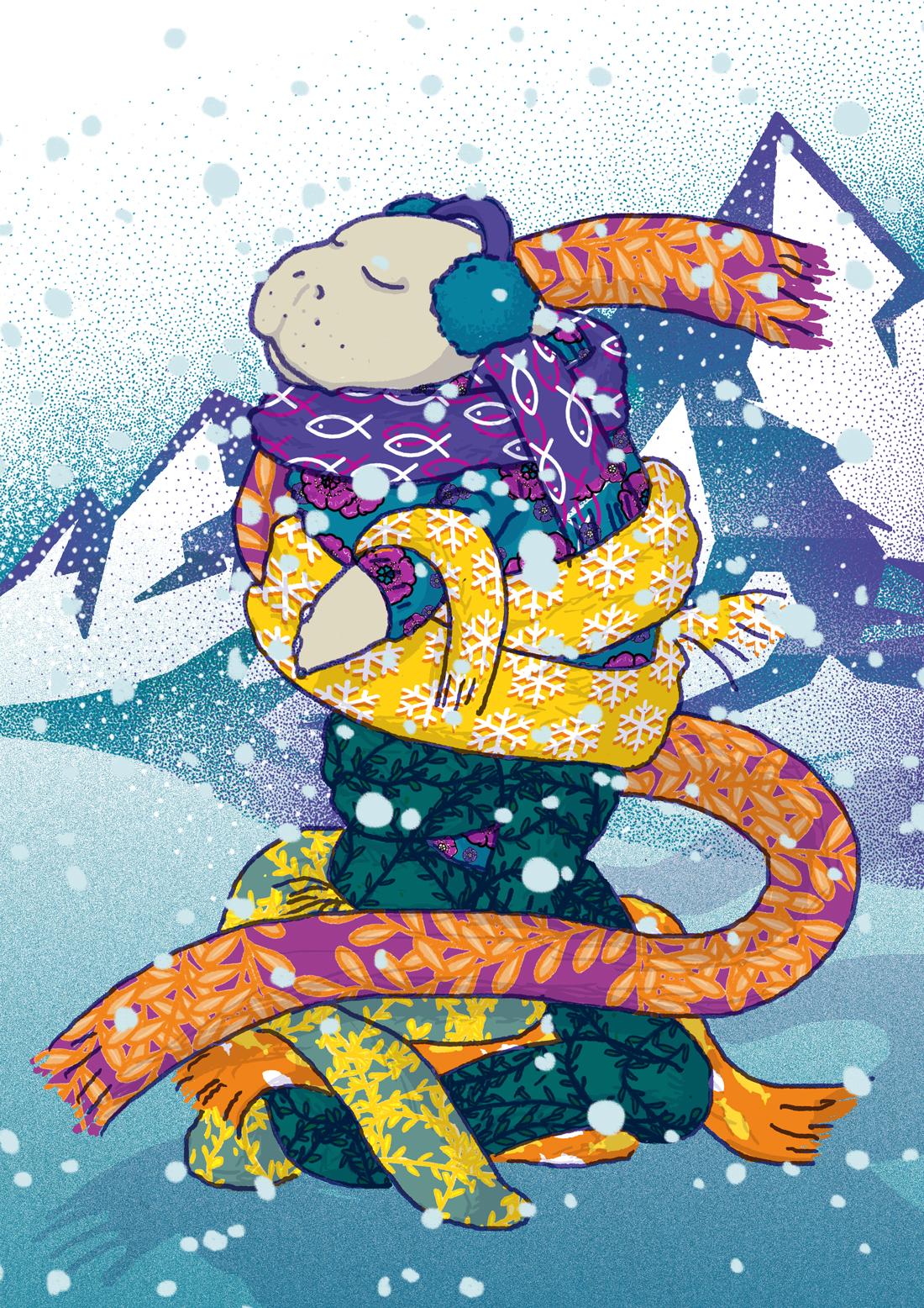 winter-manatee-tostoini