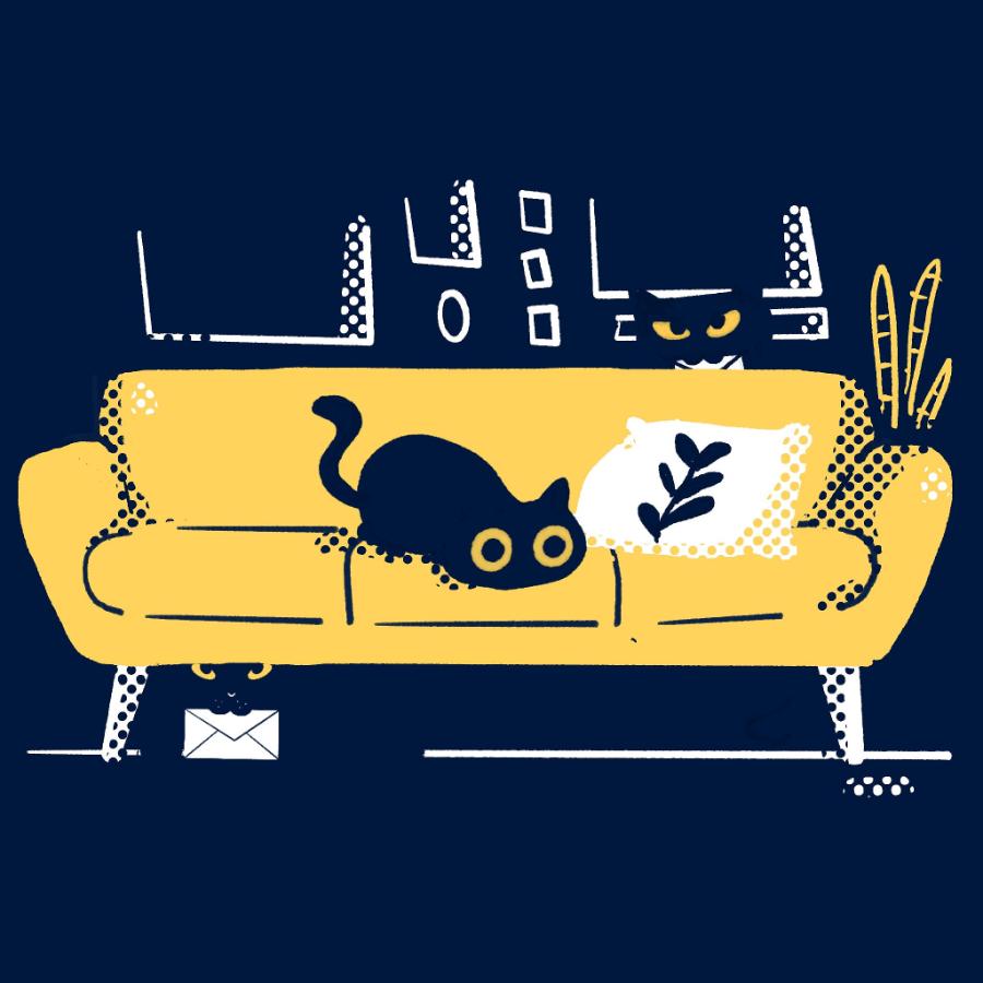 02.2021-black-cat-newsletter